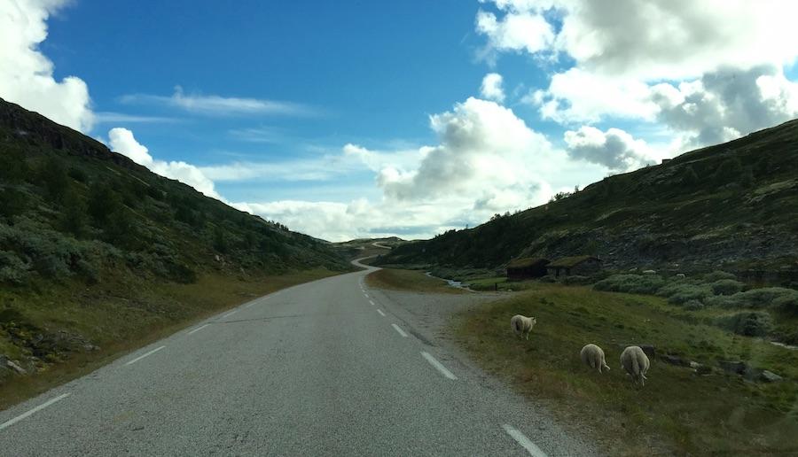 Alvdal - Gudrnadsdalen 24