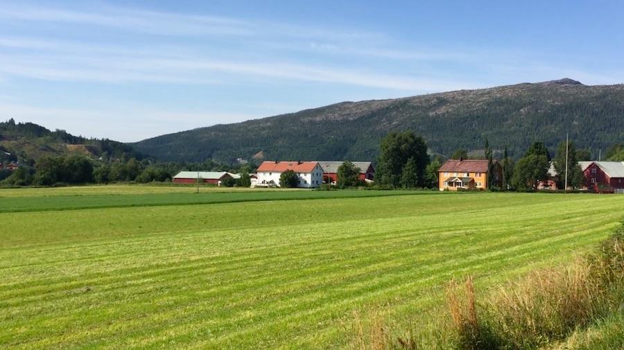 Namsskogan - Steinkjer 23