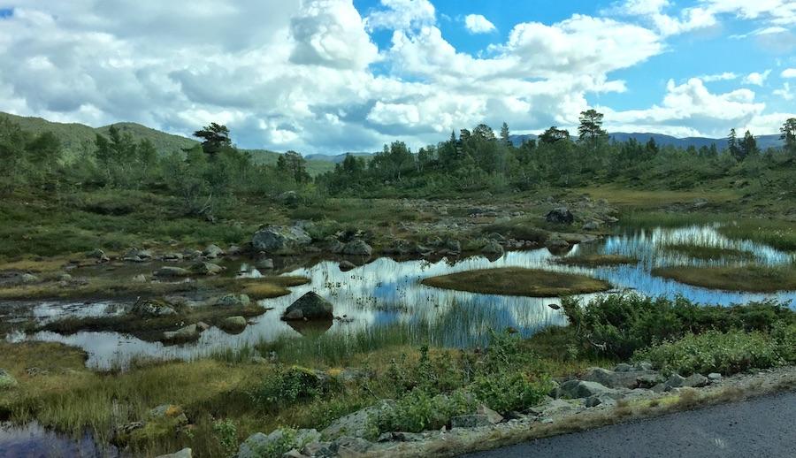 Telemark - Setesdal 15