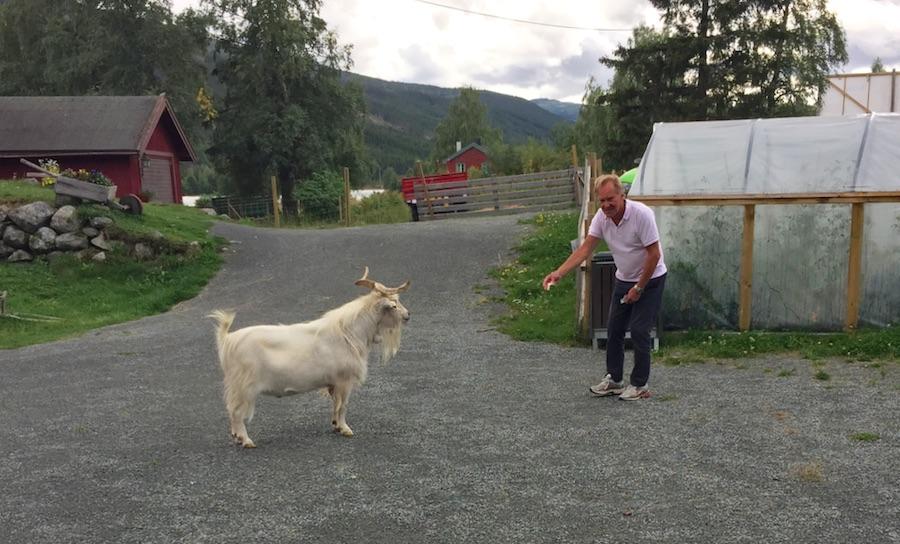 Valdres- Telemark 36