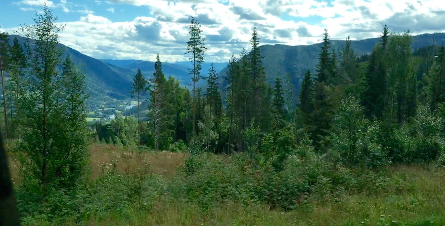 Varldres - Telemark 4