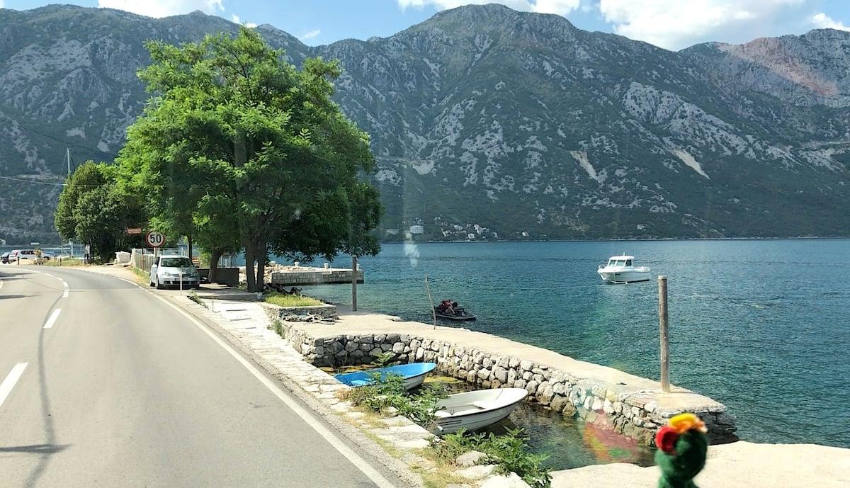 Montenegro 55