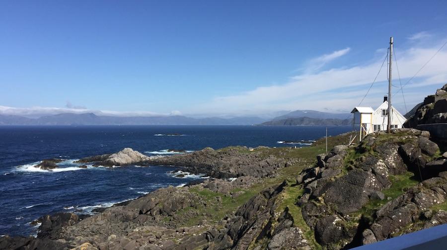 Ferda sine turtips i Norge, bilde av Kråkens fyr